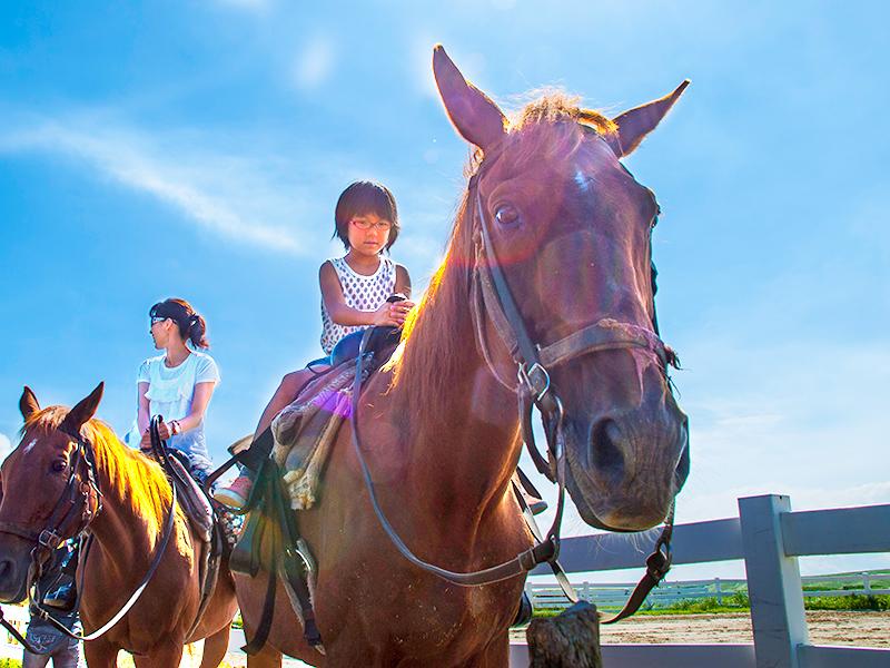 乗馬体験 (ホーストレッキング インディアンコース)イメージ