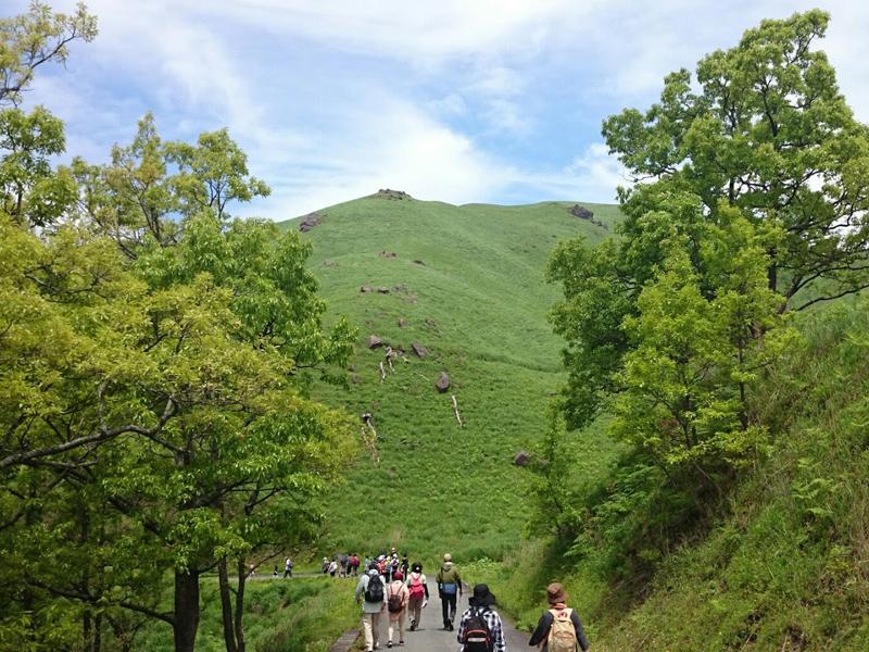 黒川温泉清流の森ガイドウォーキングイメージ