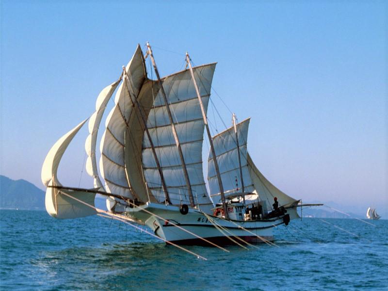 芦北観光うたせ船 (午前便・昼食付)イメージ